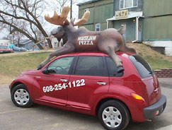 moose on car