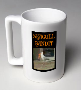 more bandit seagull, less Helvetica