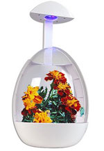 USB greenhouse