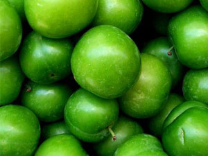 Erik the Green Plum from Turkey
