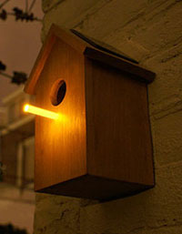 night-time birdhouse