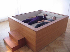 Sonic Bed or Coffin or Sardine Can
