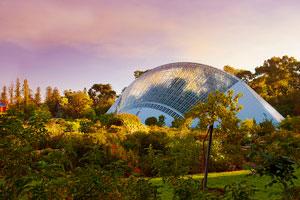 South Australia botanical gardens