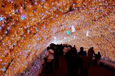 incredible Christmas light display